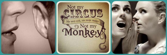 circusmonkeys1.jpg